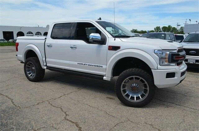 brand new 2019 Ford F 150 Lariat lifted